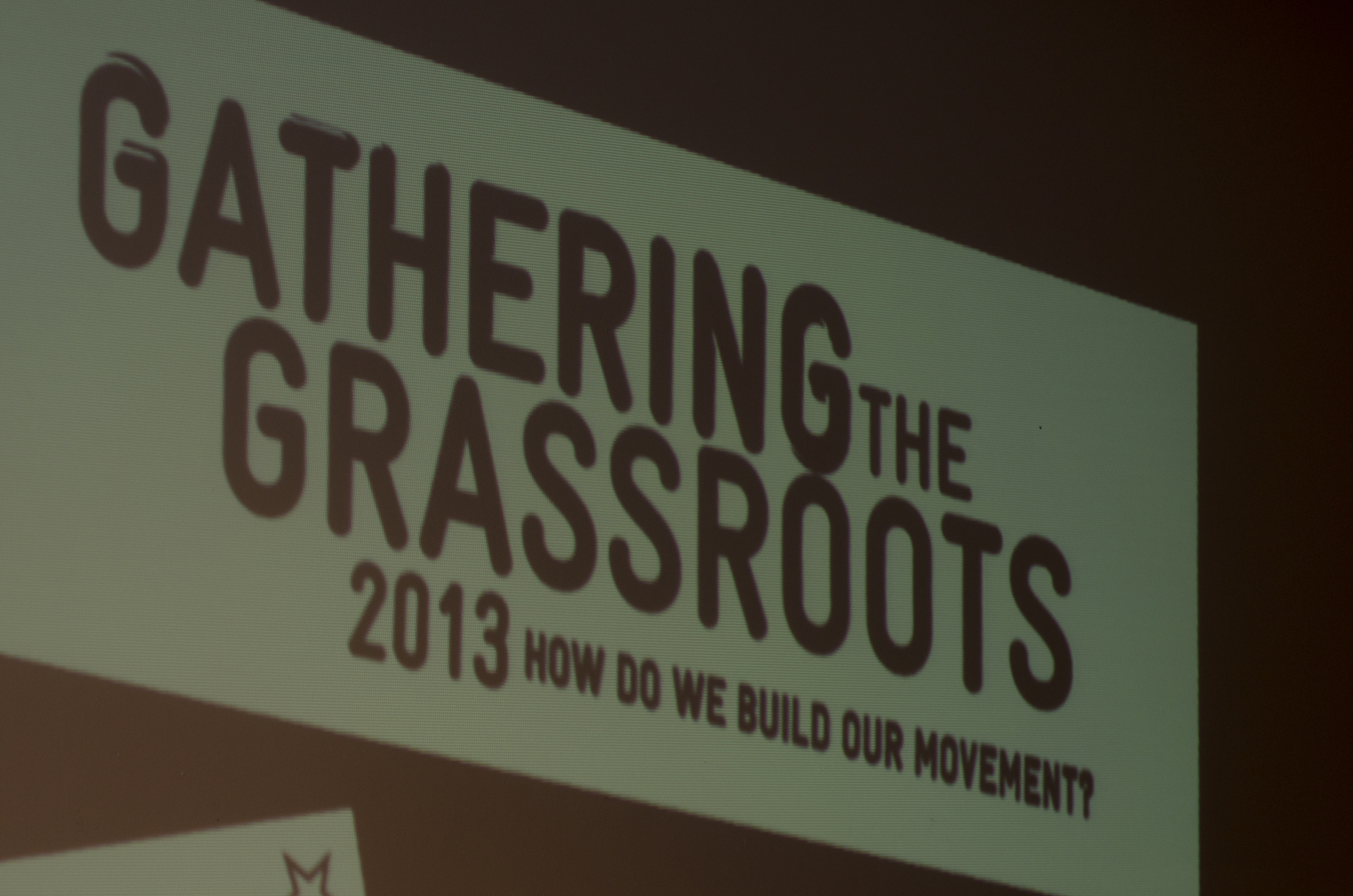 GATHERING THE GRASSROOTS